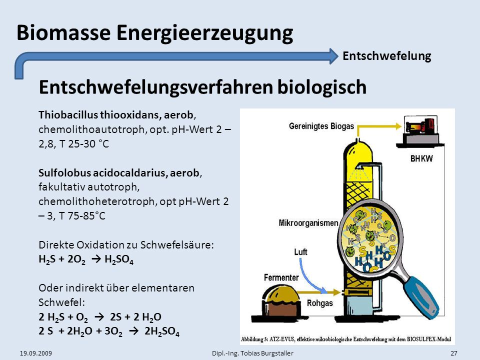 Entschwefelungsverfahren biologisch