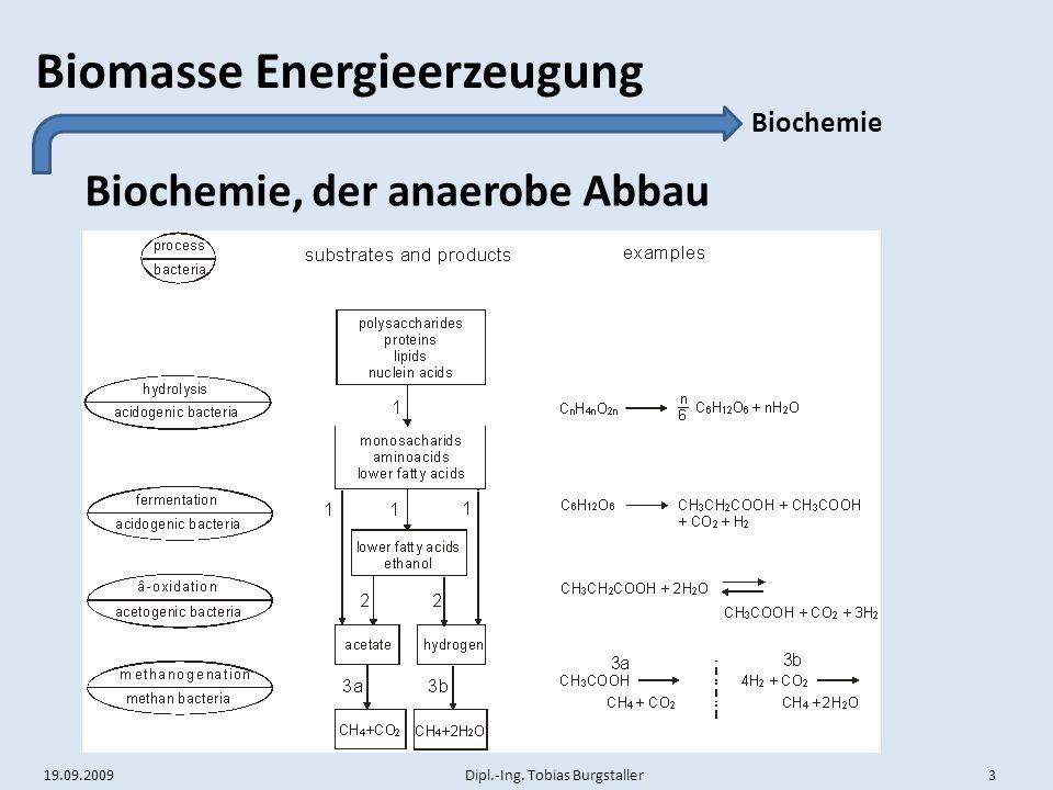 Biochemie, der anaerobe Abbau