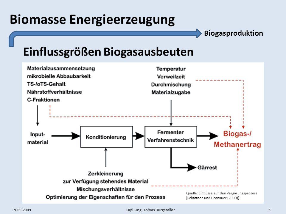 Einflussgrößen Biogasausbeuten