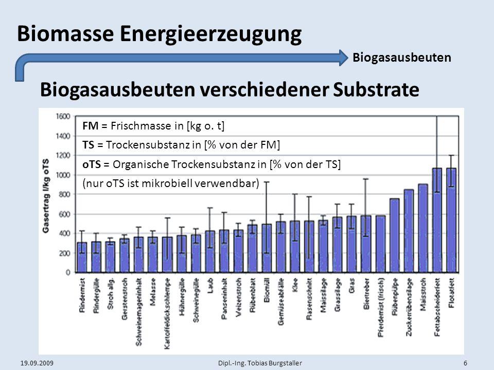 Biogasausbeuten verschiedener Substrate