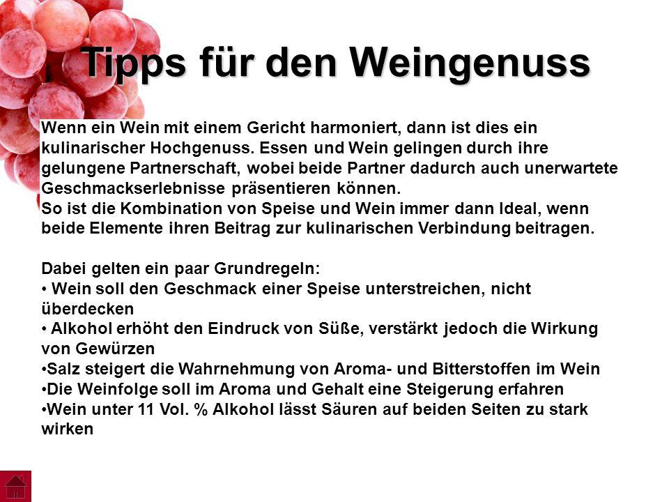 Tipps für den Weingenuss