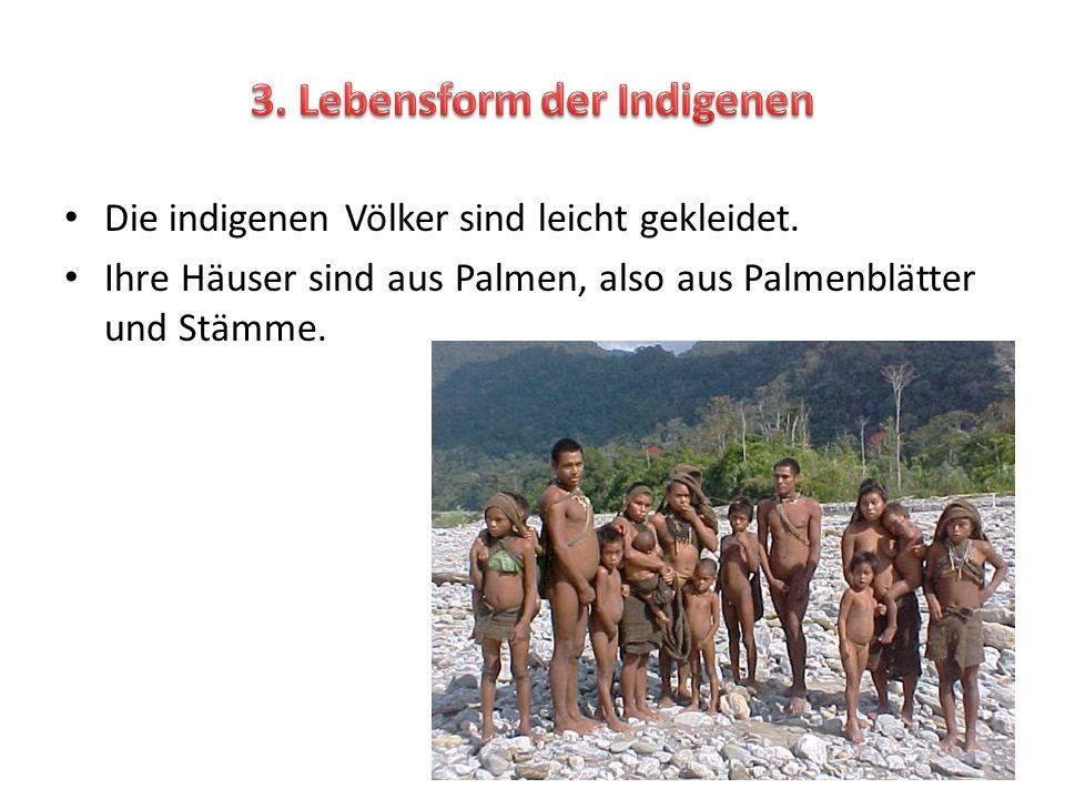 3. Lebensform der Indigenen