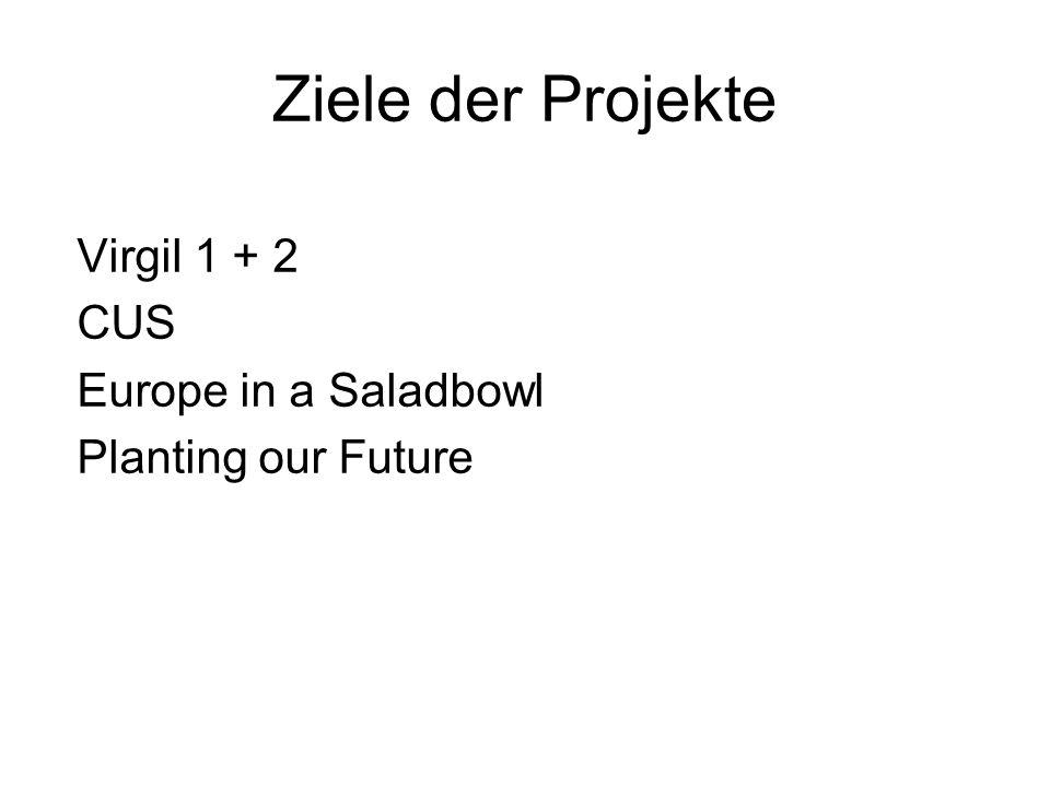 Ziele der Projekte Virgil 1 + 2 CUS Europe in a Saladbowl