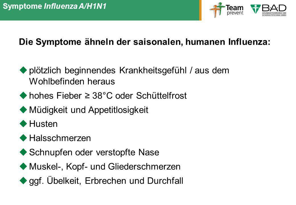 Die Symptome ähneln der saisonalen, humanen Influenza: