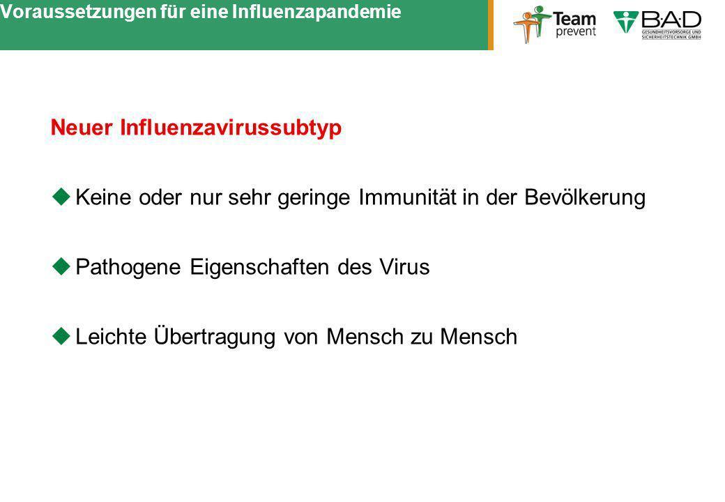Voraussetzungen für eine Influenzapandemie