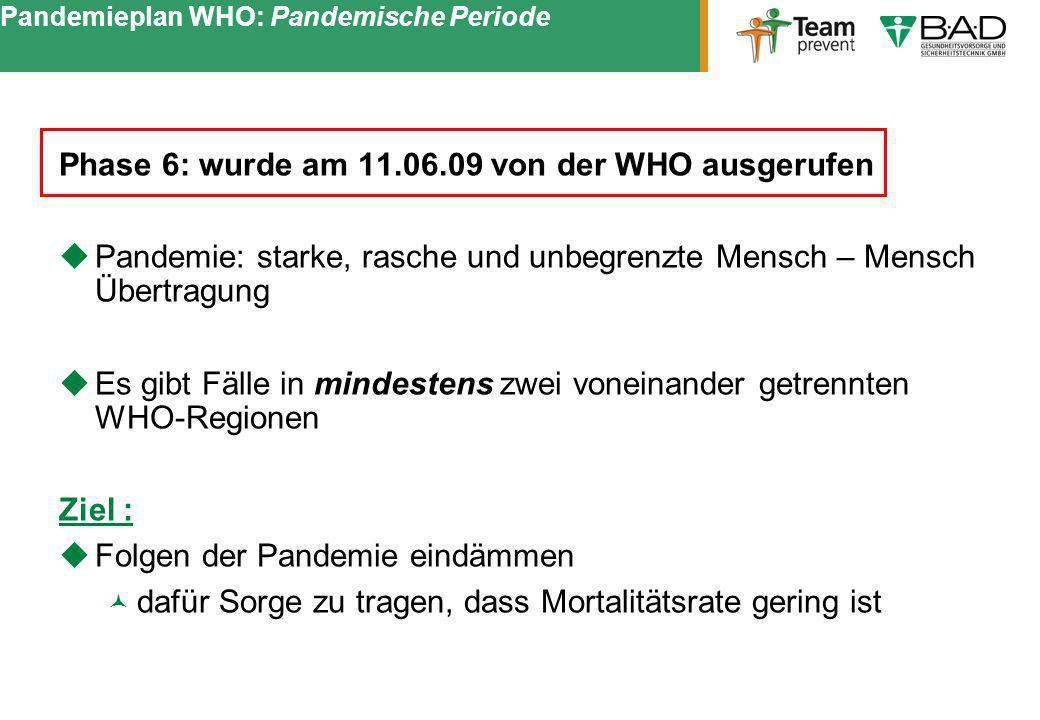 Pandemieplan WHO: Pandemische Periode