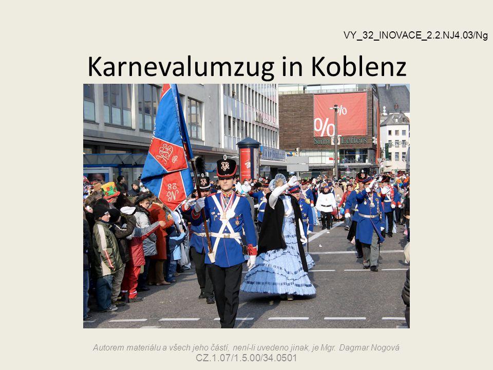 Karnevalumzug in Koblenz