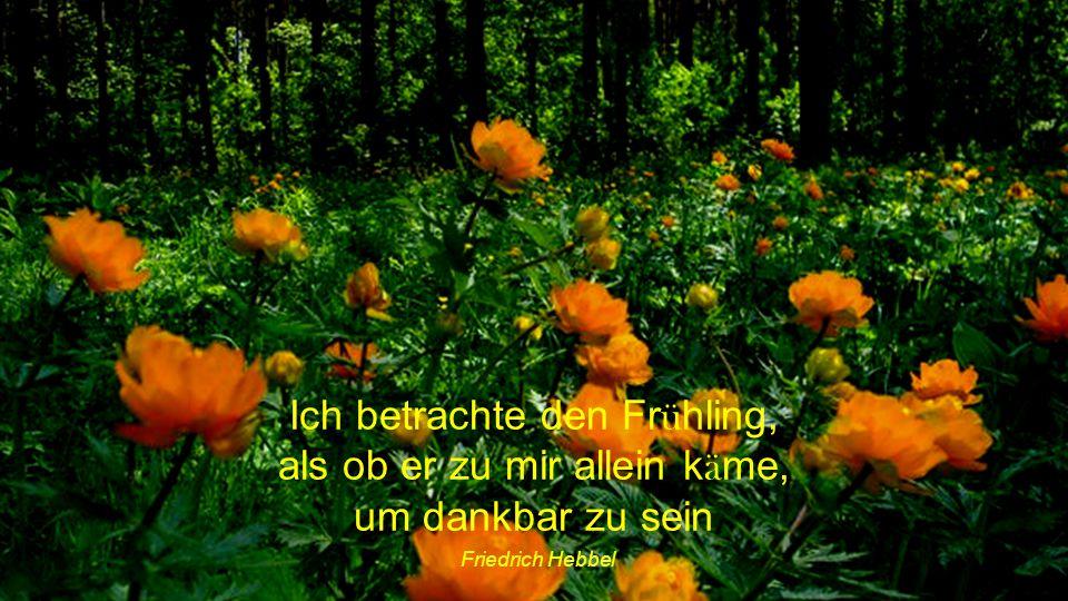 Ich betrachte den Frühling, als ob er zu mir allein käme, um dankbar zu sein