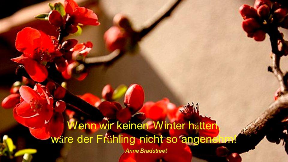 Wenn wir keinen Winter hätten, wäre der Frühling nicht so angenehm!