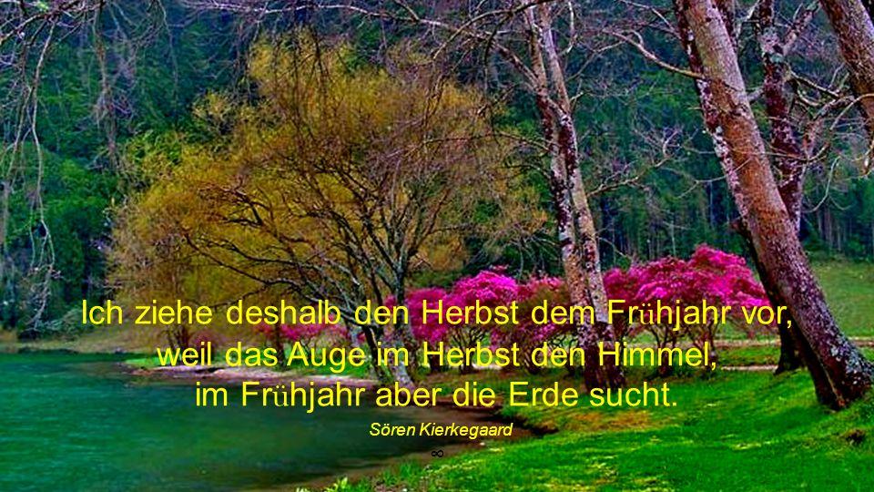 Ich ziehe deshalb den Herbst dem Frühjahr vor, weil das Auge im Herbst den Himmel, im Frühjahr aber die Erde sucht.
