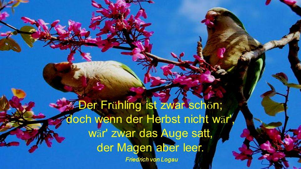Der Frühling ist zwar schön; doch wenn der Herbst nicht wär , wär zwar das Auge satt, der Magen aber leer.