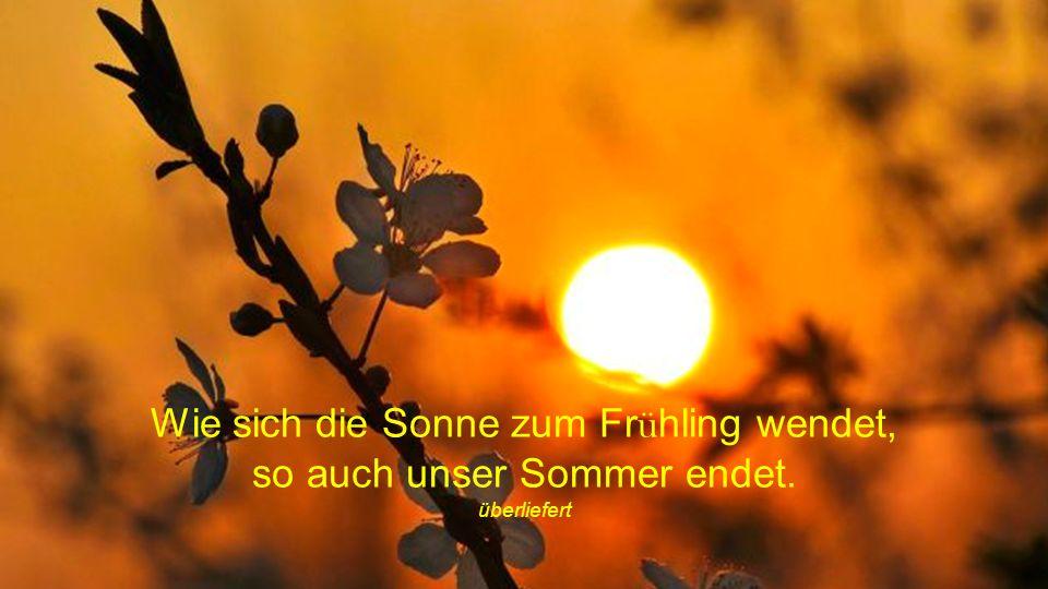 Wie sich die Sonne zum Frühling wendet, so auch unser Sommer endet.