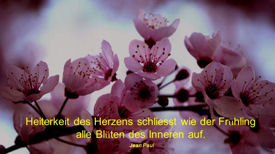 Heiterkeit des Herzens schliesst wie der Frühling alle Blüten des Inneren auf.