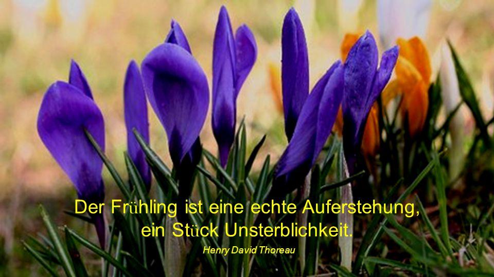 Der Frühling ist eine echte Auferstehung, ein Stück Unsterblichkeit.