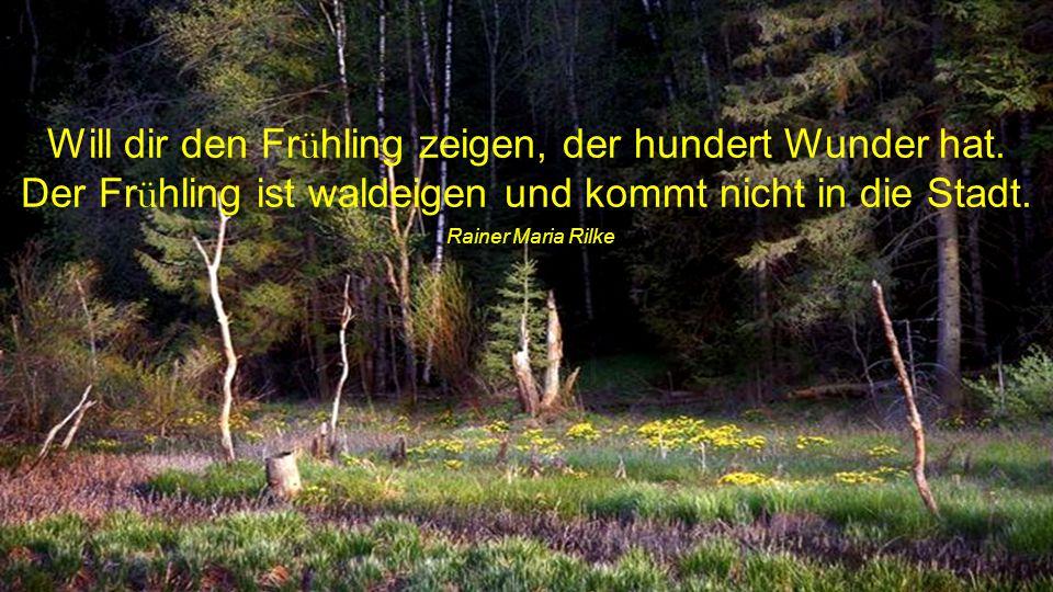 Will dir den Frühling zeigen, der hundert Wunder hat