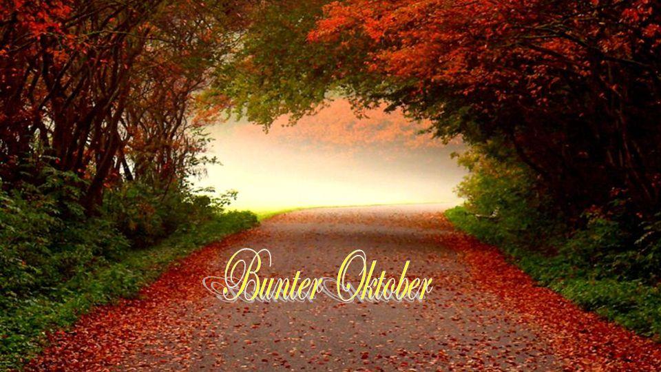Bunter Oktober