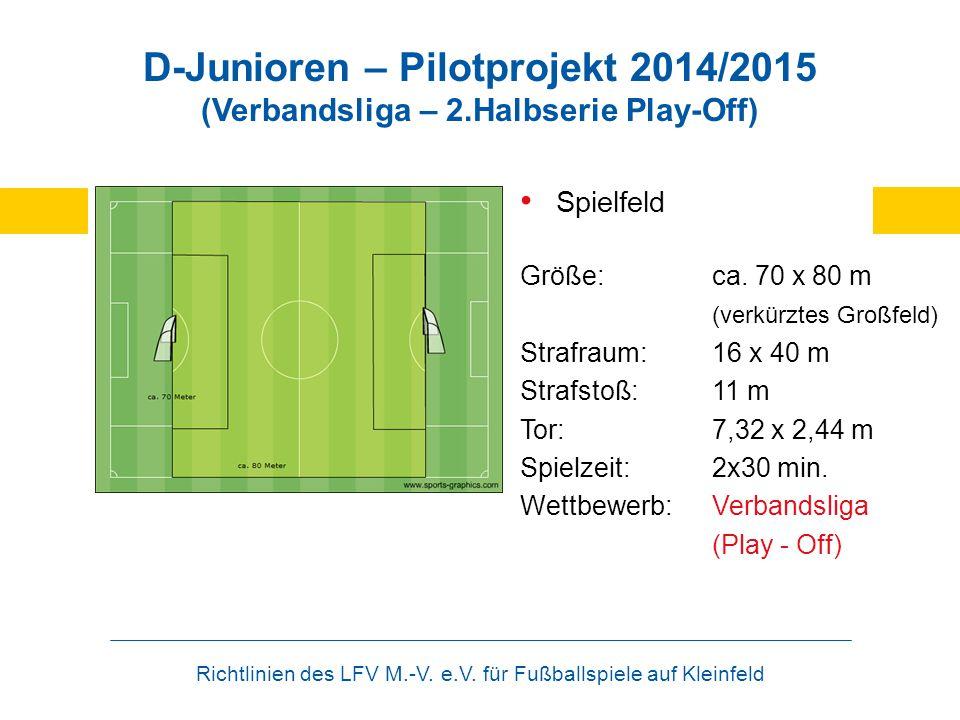 Richtlinien des LFV M.-V. e.V. für Fußballspiele auf Kleinfeld