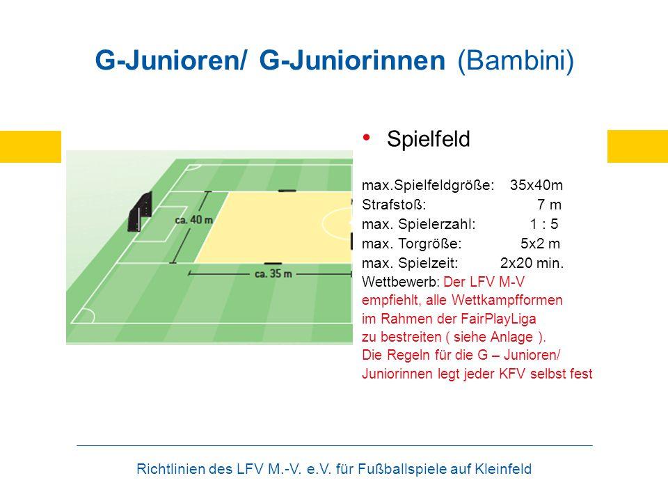 G-Junioren/ G-Juniorinnen (Bambini)