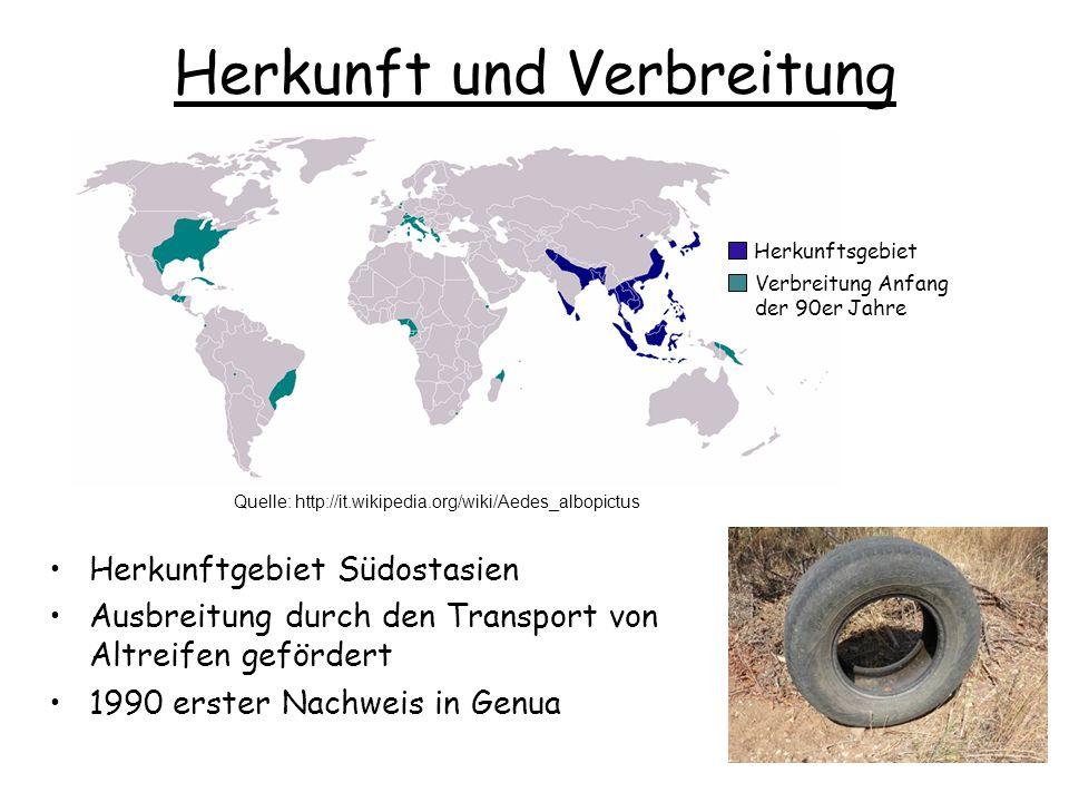 Herkunft und Verbreitung
