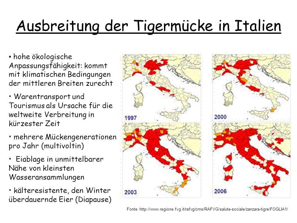 Ausbreitung der Tigermücke in Italien