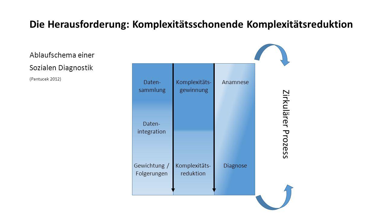 Die Herausforderung: Komplexitätsschonende Komplexitätsreduktion