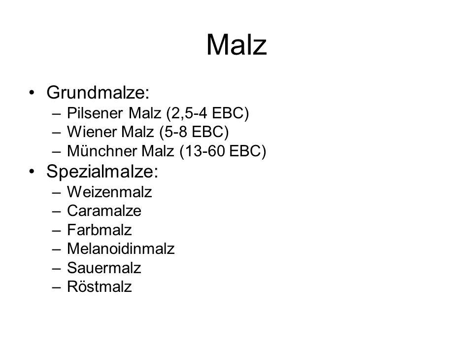 Malz Grundmalze: Spezialmalze: Pilsener Malz (2,5-4 EBC)