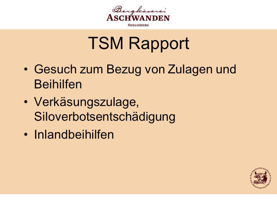 TSM Rapport Gesuch zum Bezug von Zulagen und Beihilfen