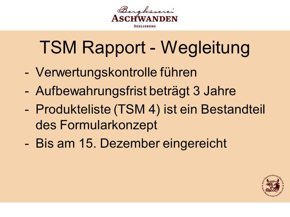 TSM Rapport - Wegleitung