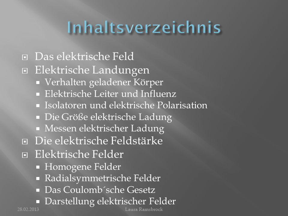 Inhaltsverzeichnis Das elektrische Feld Elektrische Landungen