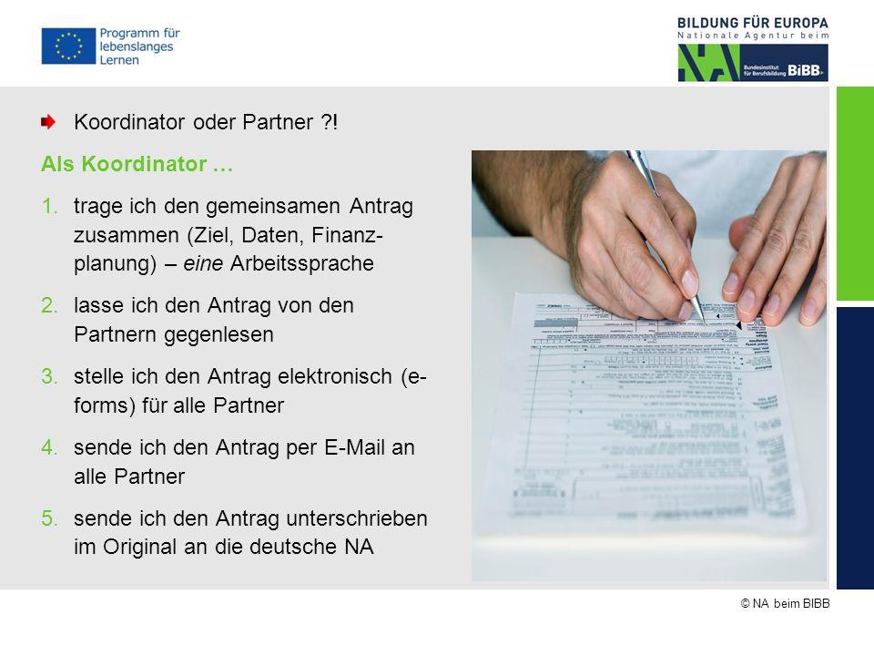 Koordinator oder Partner ! Als Koordinator …