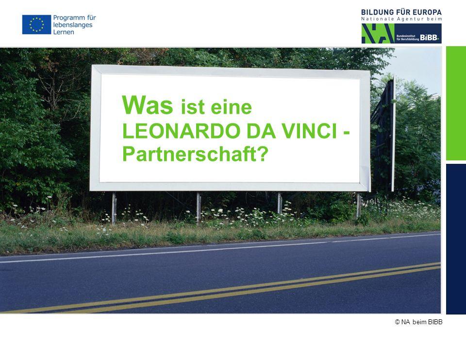 Was ist eine LEONARDO DA VINCI - Partnerschaft