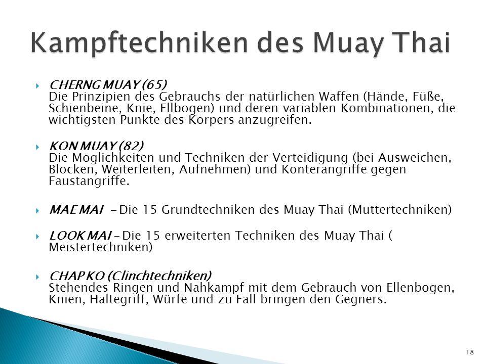 Kampftechniken des Muay Thai