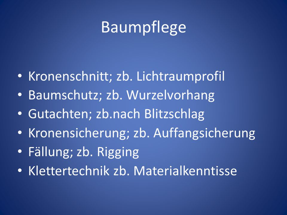 Baumpflege Kronenschnitt; zb. Lichtraumprofil