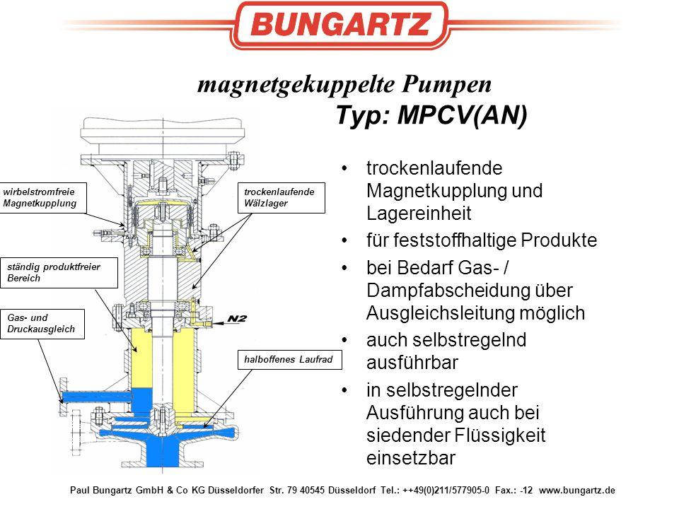 magnetgekuppelte Pumpen Typ: MPCV(AN)
