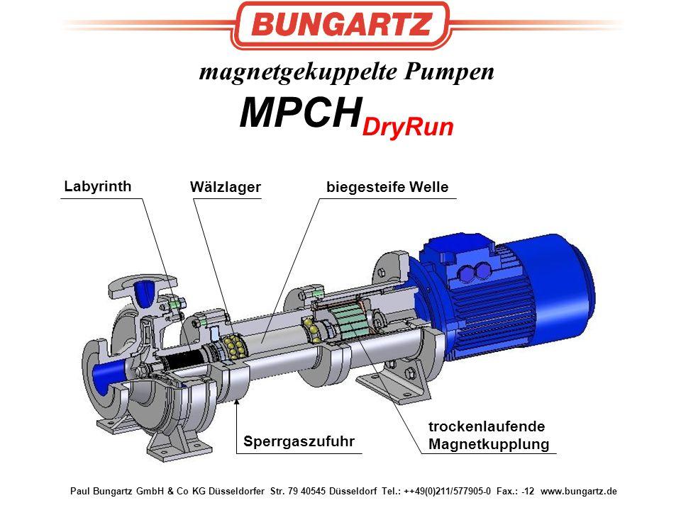 magnetgekuppelte Pumpen