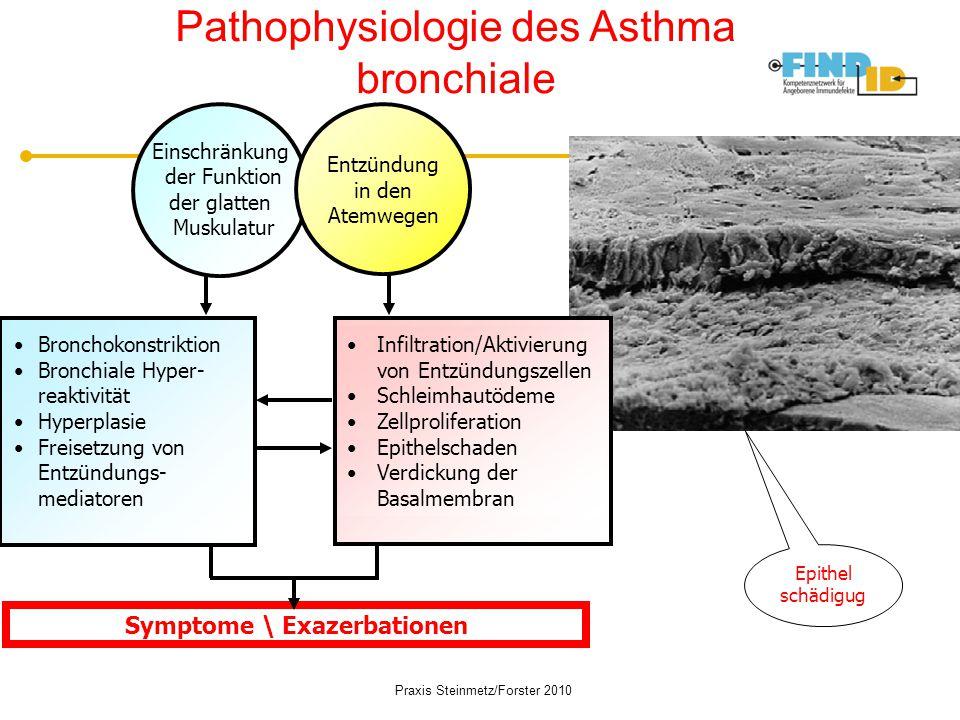 Symptome \ Exazerbationen