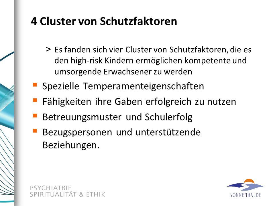 4 Cluster von Schutzfaktoren