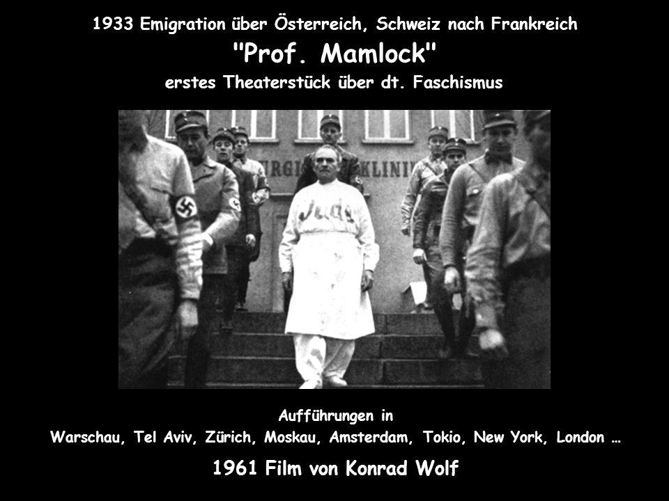 1933 Emigration über Österreich, Schweiz nach Frankreich Prof