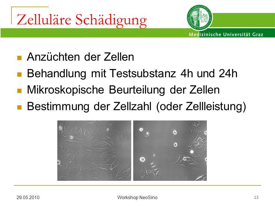 Zelluläre Schädigung Anzüchten der Zellen