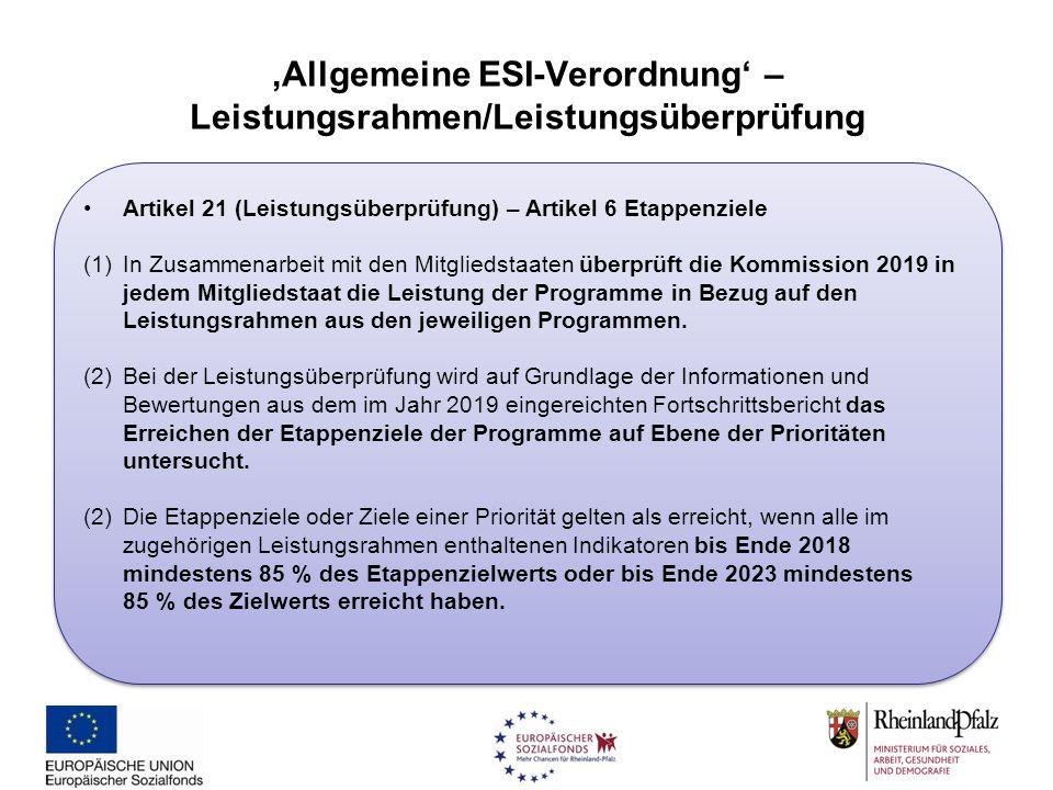 'Allgemeine ESI-Verordnung' – Leistungsrahmen/Leistungsüberprüfung