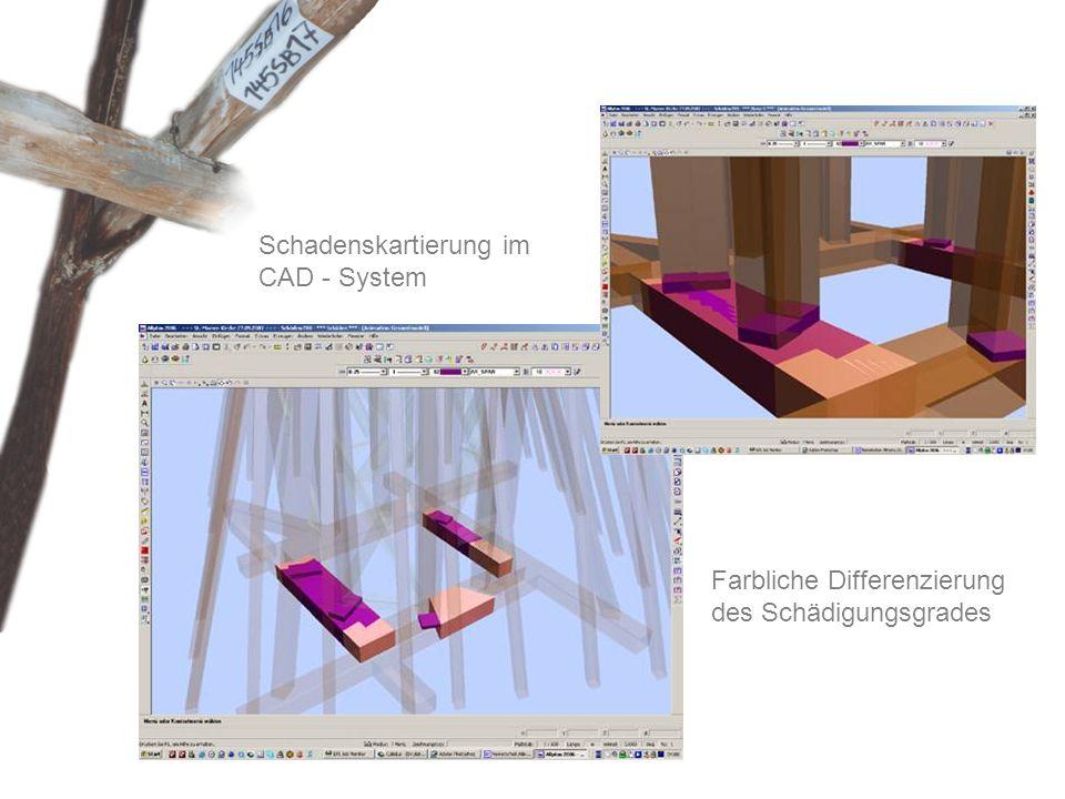 Schadenskartierung im CAD - System