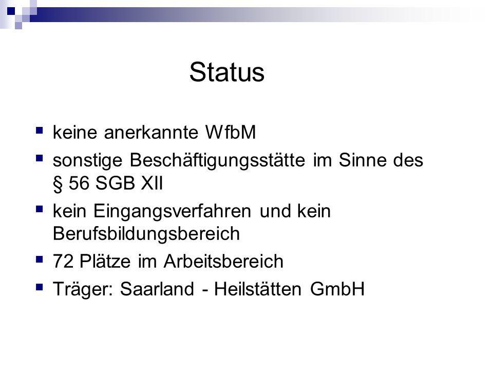 Status keine anerkannte WfbM