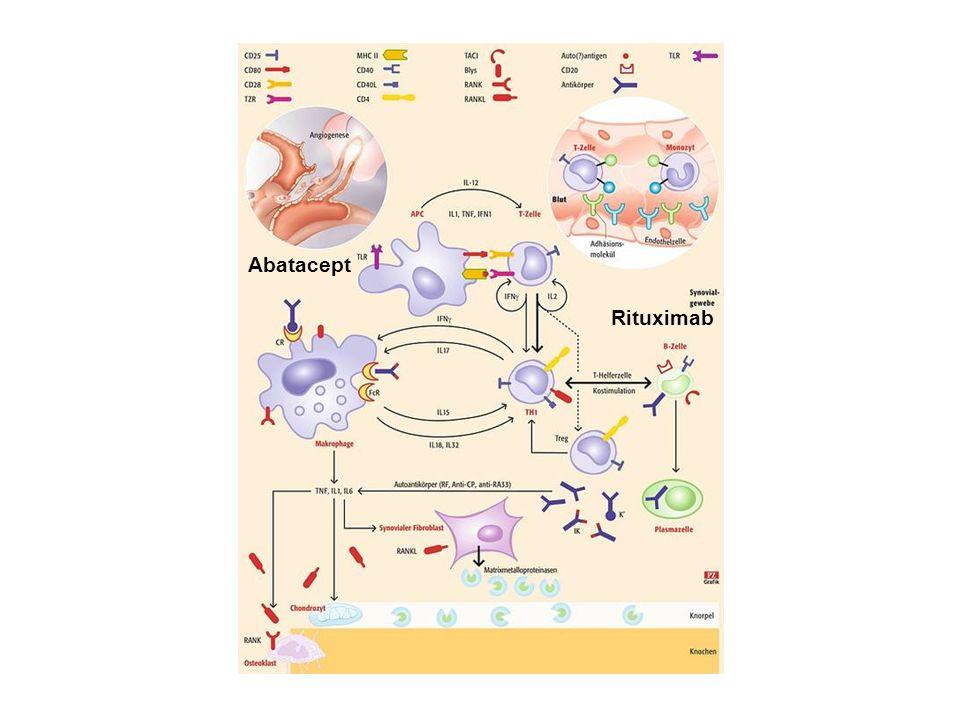 Abatacept Rituximab