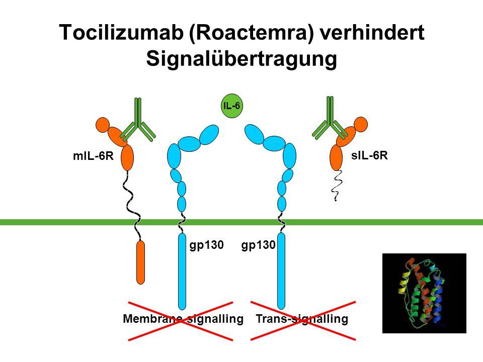 Tocilizumab (Roactemra) verhindert Signalübertragung