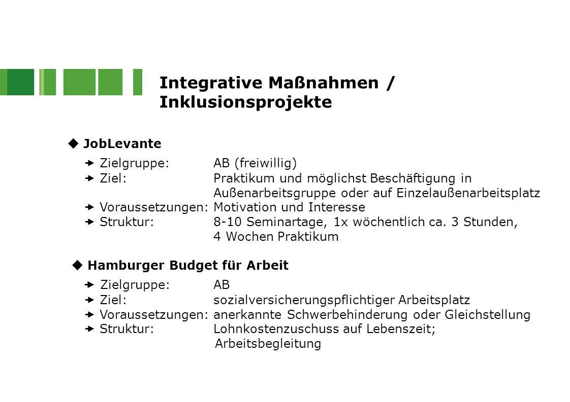 Integrative Maßnahmen / Inklusionsprojekte