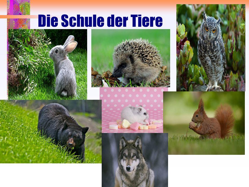 Die Schule der Tiere