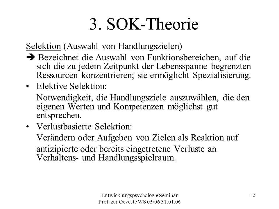 Entwicklungspsychologie Seminar Prof. zur Oeveste WS 05/06 31.01.06