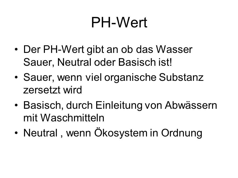 PH-Wert Der PH-Wert gibt an ob das Wasser Sauer, Neutral oder Basisch ist! Sauer, wenn viel organische Substanz zersetzt wird.