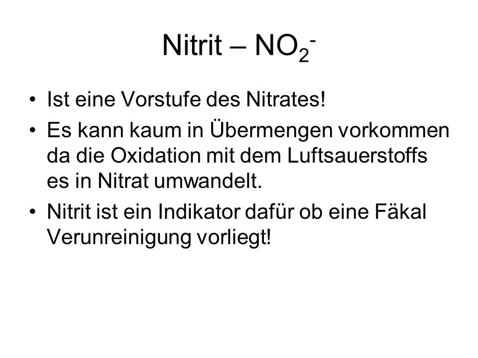 Nitrit – NO2- Ist eine Vorstufe des Nitrates!