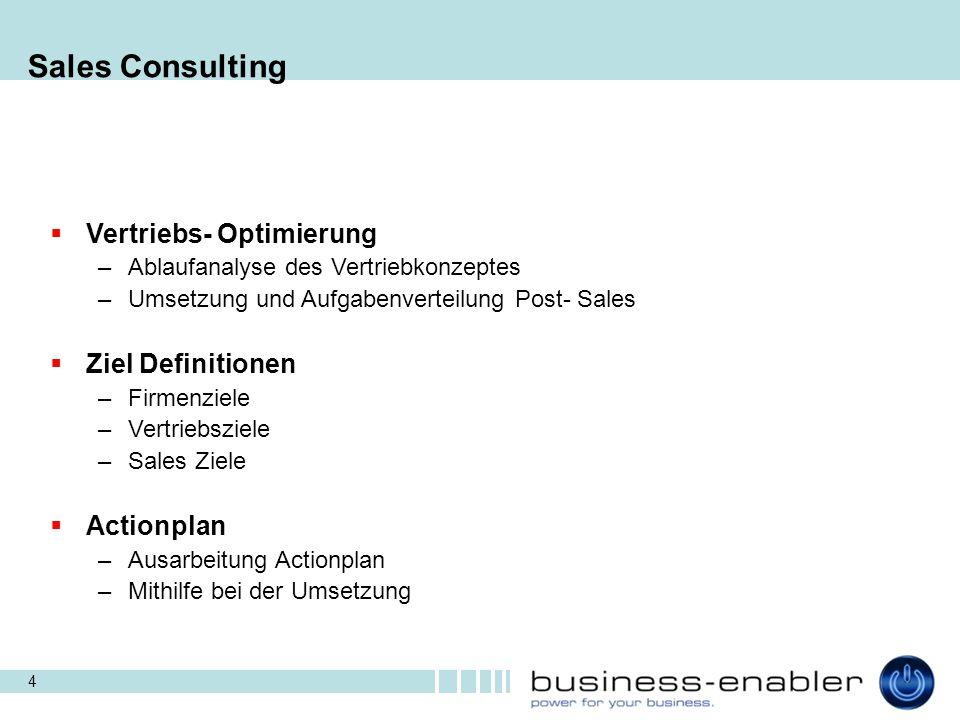 Sales Consulting Vertriebs- Optimierung Ziel Definitionen Actionplan